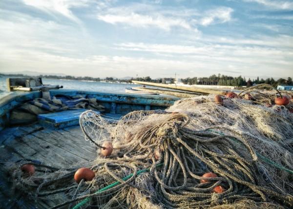 seafood trade