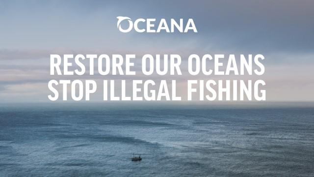 oceana illegal fishing news