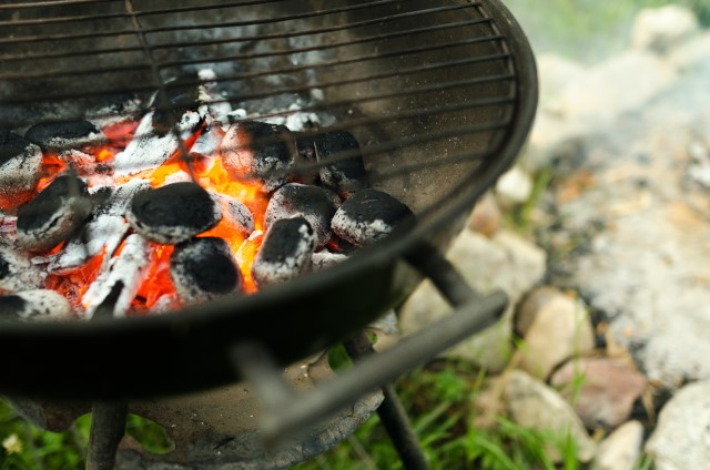 halibut grilling